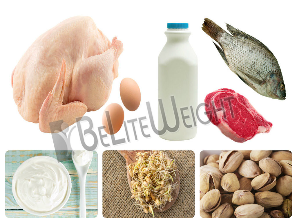 Protein Rich Foods|BeLite Weight