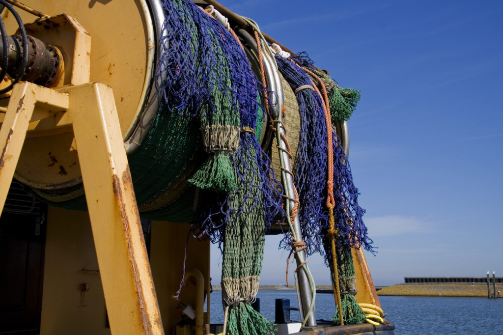 Fishing Nets fish to avoid fish to enjoy weight loss nutrition
